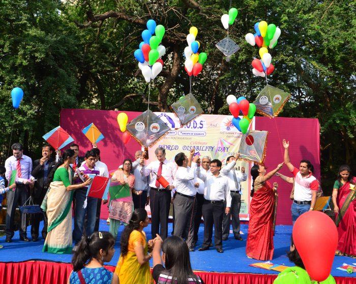 Kite Festival 2011